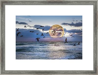 Full Moon Moment Framed Print