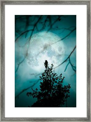 Full Moon Raven Framed Print