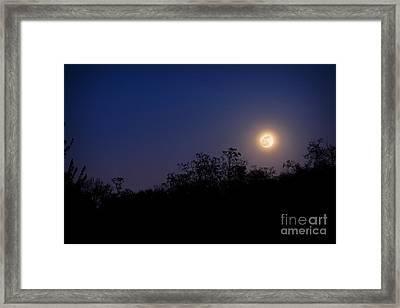 Full Moon Rising Over Trees Framed Print by Sharon Dominick