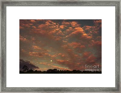 Full Moon Setting At Sunrise Framed Print by Thomas R Fletcher