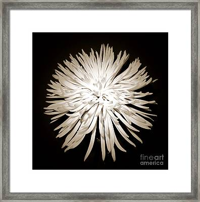 Full-moon Framed Print by Son Of the Moon