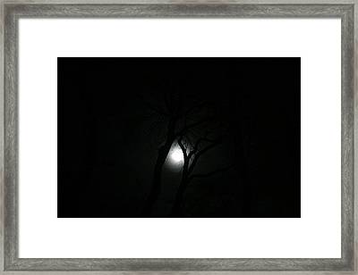 Framed Print featuring the photograph Full Moon Through Trees by Marilyn Hunt