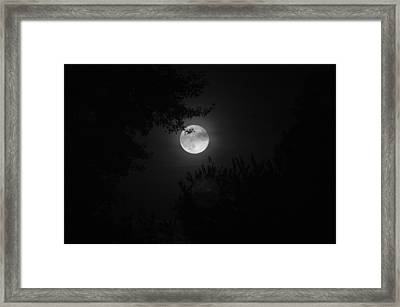 Full Moon With Branches Framed Print