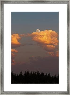 Full Moonrise Over Tree Silhouette Framed Print by David Gn