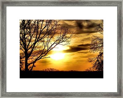 Full Of Beauty Framed Print