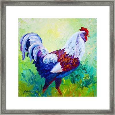 Full Of Himself - Rooster Framed Print