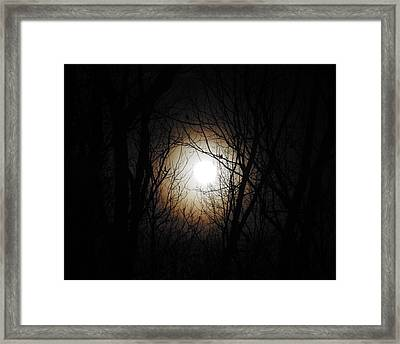 Full Pink Moon Rising Framed Print by Traci York