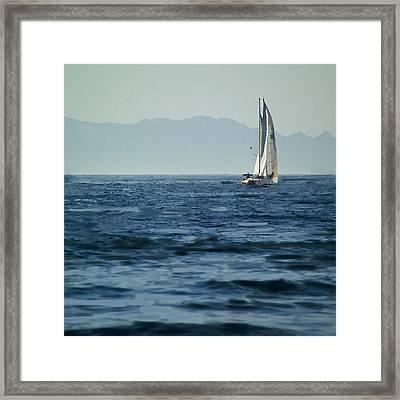 Full Sails Framed Print