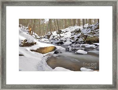 Full Scene  Winter Pool Framed Print