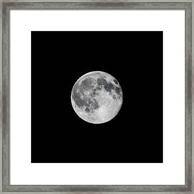 Full Strawberry Moon June 2016 Square Framed Print