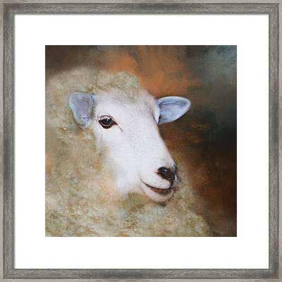 Framed Print featuring the photograph Fully Woolly by Robin-Lee Vieira