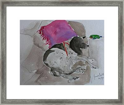 Fulmi And Pink Pillow Framed Print by Janet Butler