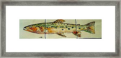 Fun Fish Framed Print by Sandra Maddox