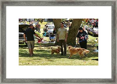Fun In The Park Framed Print by Linda Brody