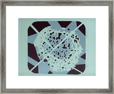 Framed Print featuring the mixed media Fungus by Erika Chamberlin