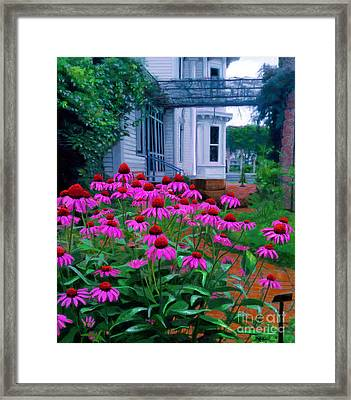Funk Herb Garden And Porch Framed Print