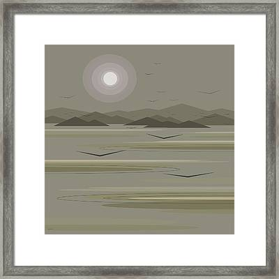 Funky Moon Birds Framed Print by Val Arie
