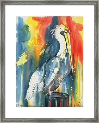 Funky Pelican Framed Print