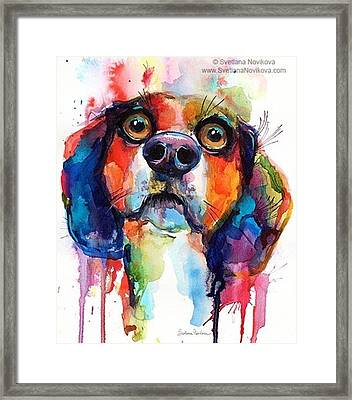 Funny Beagle Watercolor Portrait By Framed Print