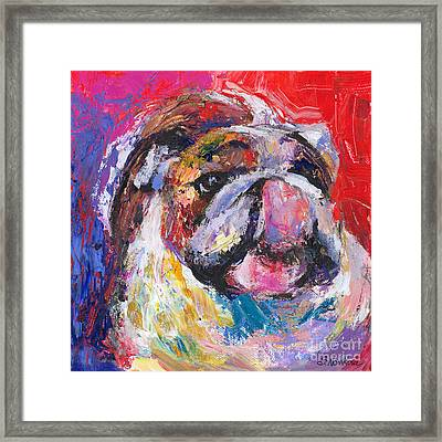 Funny Bulldog Licking His Hose Painting Framed Print by Svetlana Novikova
