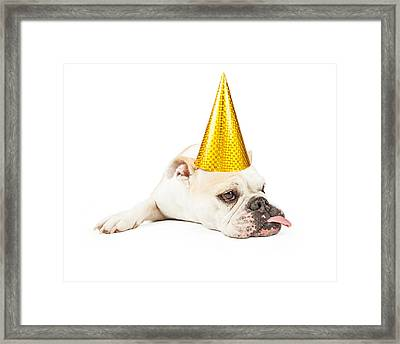 Funny Bulldog Wearing A Yellow Party Hat  Framed Print