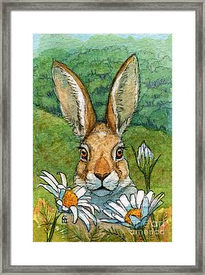 Funny Bunnies - With Chamomiles 889 Framed Print by Svetlana Ledneva-Schukina