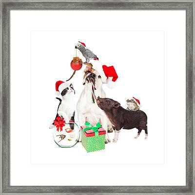 Funny Christmas Pet Compositie Framed Print