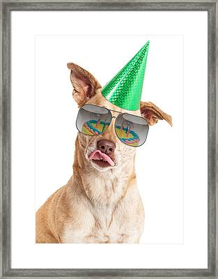 Funny Dog Birthday Cake Reflection Framed Print