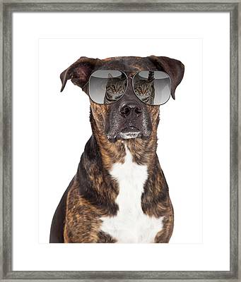 Funny Dog With Cat Reflection In Sunglasses Framed Print