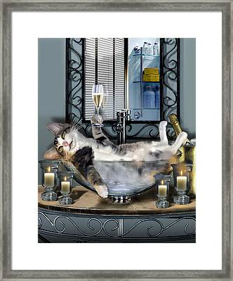 Funny Pet Print With A Tipsy Kitty  Framed Print by Regina Femrite