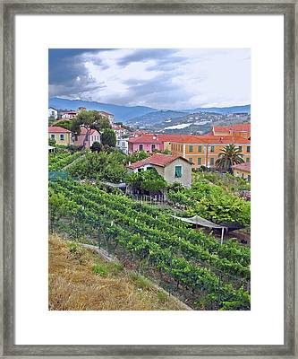 Furrowed Earth, Stormy Sky Framed Print