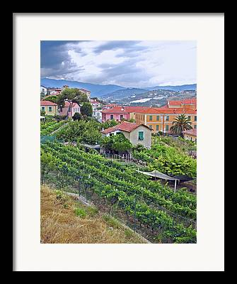 Pastoral Vineyards Digital Art Framed Prints