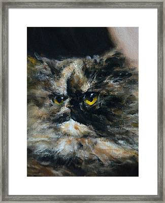 Furry Framed Print