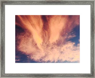 Fury Framed Print by Russell Keating