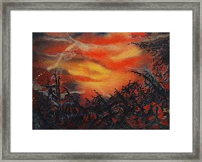 Fury Framed Print by Shirley McMahon