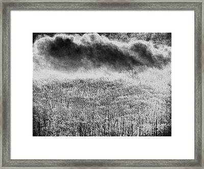 Framed Print featuring the photograph Fury by Steven Huszar