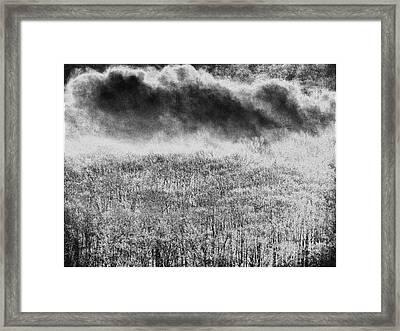Fury Framed Print by Steven Huszar