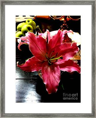 Fushia Beauty Framed Print by Deborah MacQuarrie-Selib