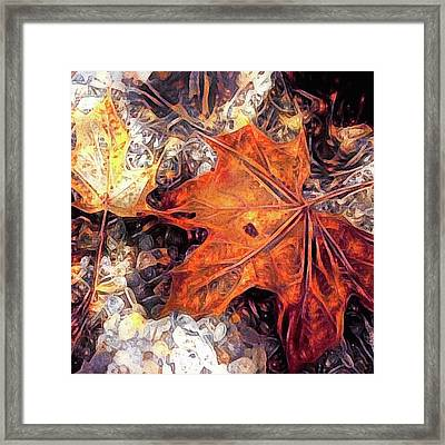 Fuzzy Sweater Weather Framed Print