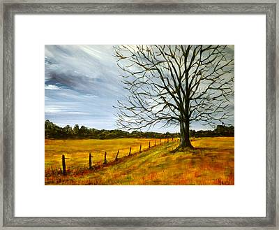 Ga Winter Framed Print by Pete Maier