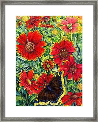 Gaillardia Framed Print by Catherine G McElroy