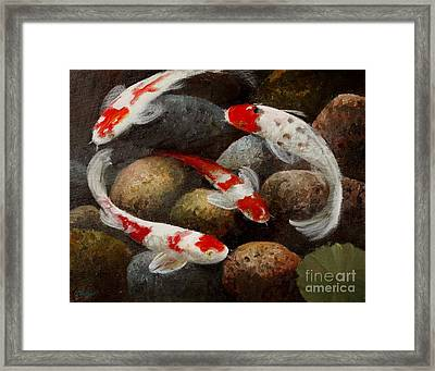 Gails Koi Pond Framed Print by Gail Salitui