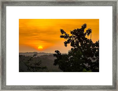 Gainesville Sunrise Framed Print