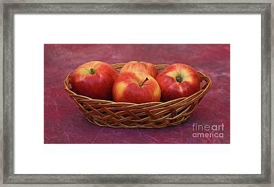 Gala Apple Basket Framed Print