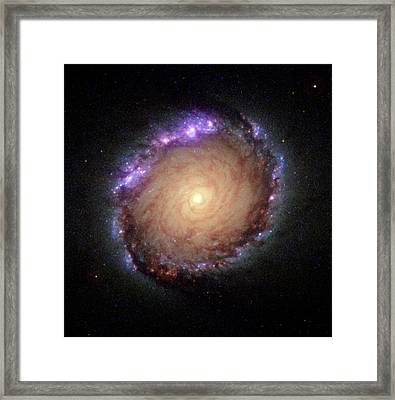 Galaxy Ngc 1512 Framed Print by Hubble Space Telescope