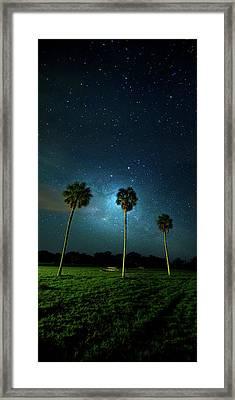 Galaxy Palms Framed Print