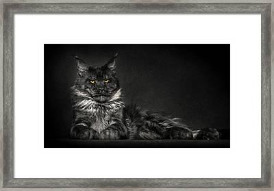 Framed Print featuring the photograph Galaxy by Robert Sijka