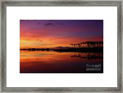 Gale Creek Framed Print by Marty Fancy