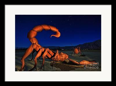 Sam Avery Photographs Framed Prints