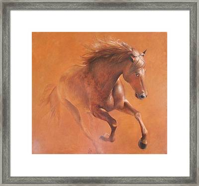 Gallop In The Desert Framed Print